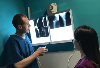 Radiografia Digital Veterinaria