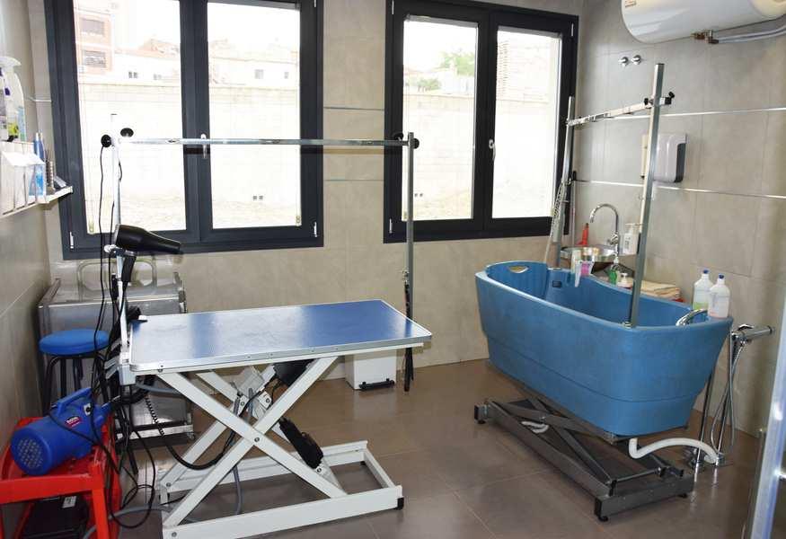 veterinaria cervantes banyeres mariola