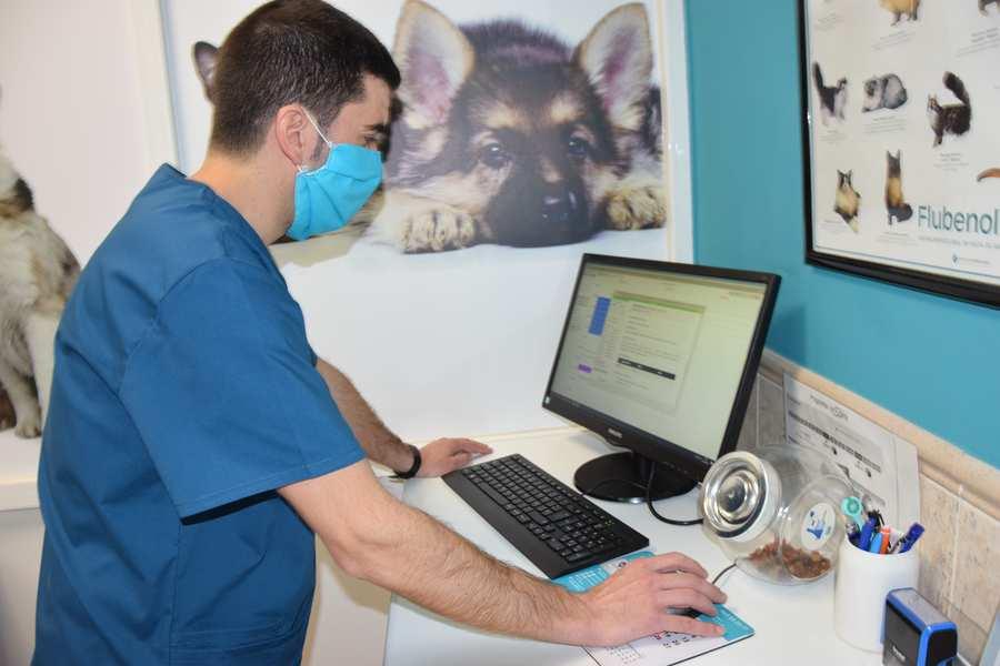 veterinaria cervantes villena